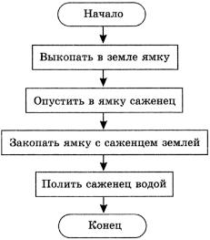 С помощью блок - схемы данный