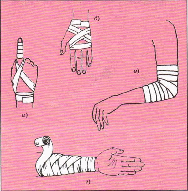 Как сделать повязку на лапу 62